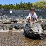 滝沢総合公園ロックガーデン