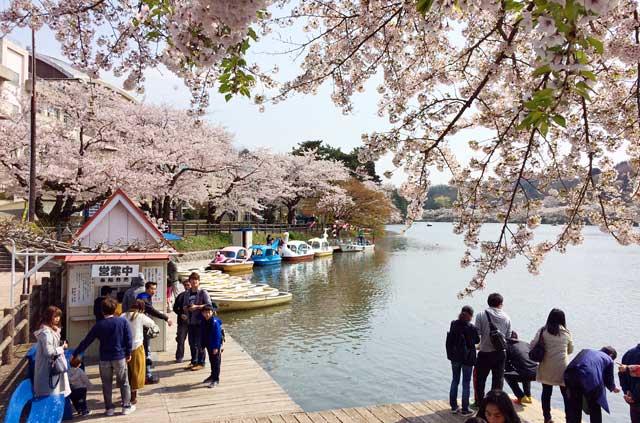 高松の池のボート乗り場