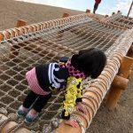 ロープの網が張られた木製遊具