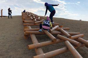 丸太の上を渡る木製遊具